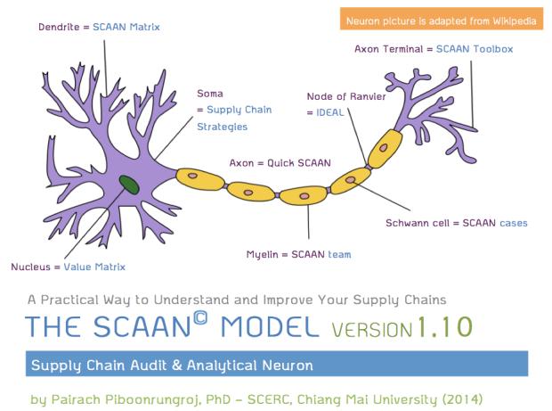 SCAAN Model